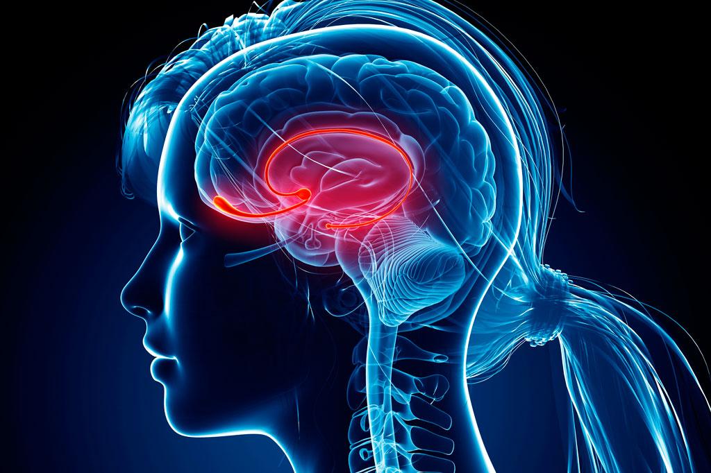 Como-Prevenir-o-Infarto-Cerebral-e-os-Danos-a-Memoria Como Prevenir o Infarto Cerebral e os Danos à Memória